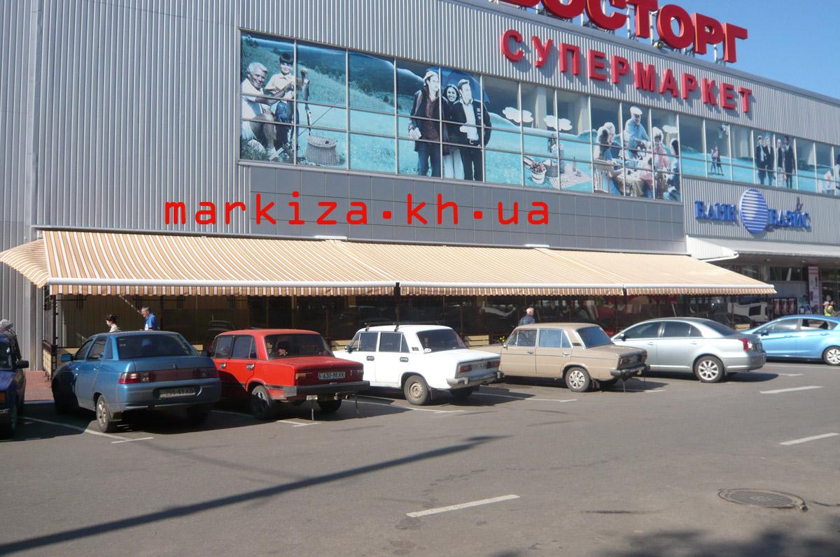 markiza-loktevaya-vostorg-kharkov